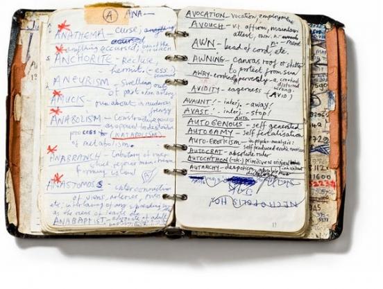дневники личные фото