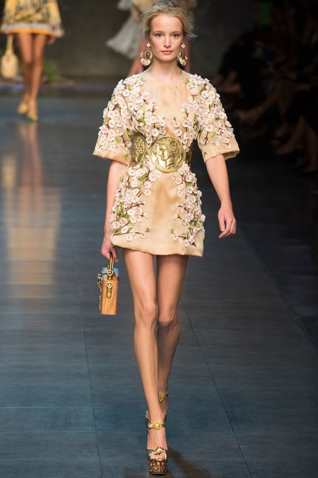 dolce&gabbana 2014 spring summer mini dress