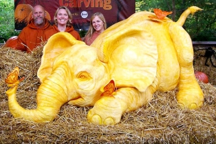 elephant-pumpkin-carving-coverimage