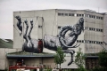 street-art-by-roa-(6)