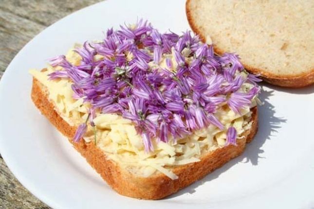 chive_flowers_are_edible_sandwich