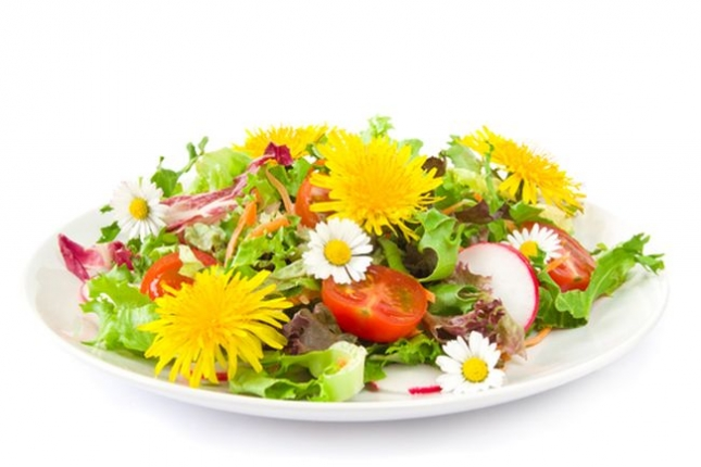 Edible Flowers and Suggestions for Recipes_1