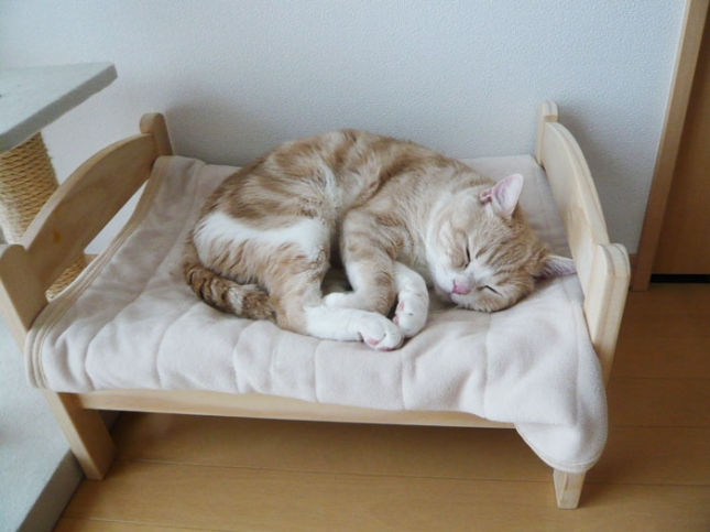 ikea-duktig-bed-hack-cat-bed-19
