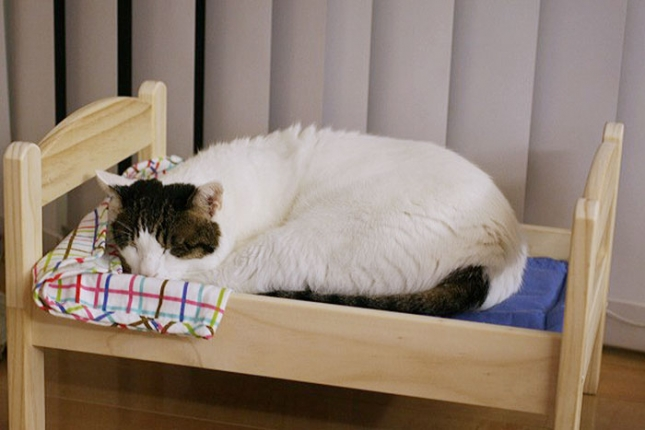 ikea-duktig-bed-hack-cat-bed-3