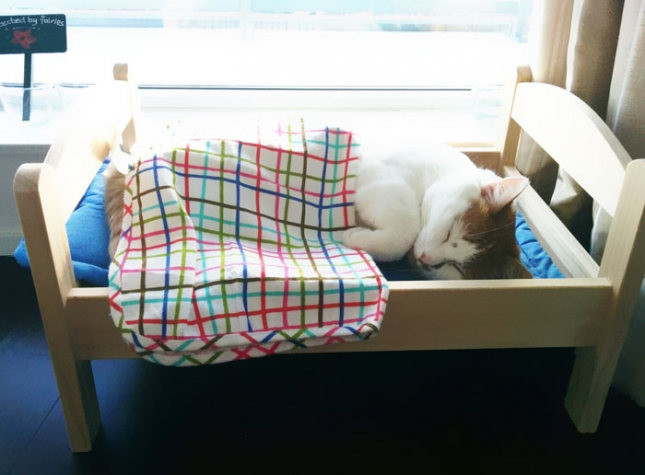 ikea-duktig-bed-hack-cat-bed-6