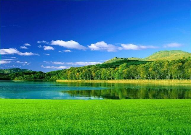 Зеленые поля, простая трава. Никаких цветов. Чистая и классическая красота природных пейзажей. Какое счастье, что мы можем видеть эту невероятную красоту.