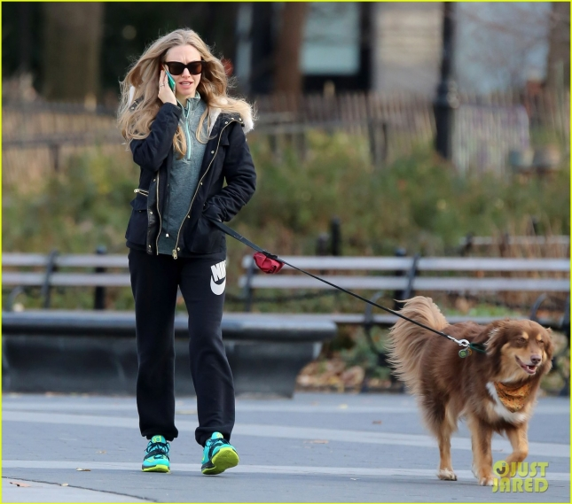 amanda-seyfried-takes-finn-for-a-walk-11