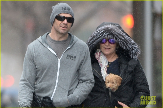 Hugh Jackman and family walk their new poodle mix puppy in Manhattan