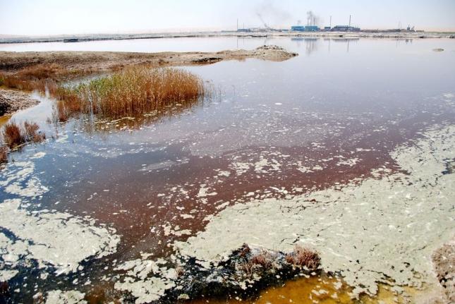 Грязная пена в водоемах, окружающих промышленные заводы
