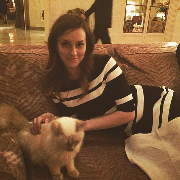 Leighton-Meester-cuddled-cat