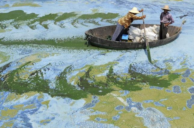 Рыбаки плывут по реке, загрязненной водорослями в провинции Аньхой в Хэфэе.