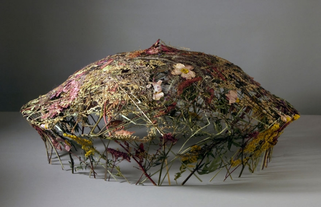 Spanish-Artist-Creates-Delicate-Pressed-Flower-Sculptures4__880