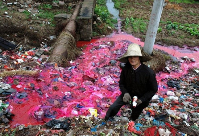 Женщина собирает пластиковые бутылки в загрязненном ручье