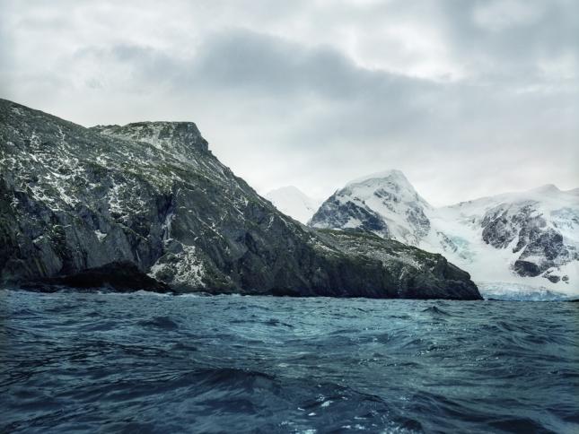 Антарктический мох, 5500 лет. Остров Мордвинова в Антарктиде. Уникальный мох провел в глубокой заморозке тысячи лет. Ученые пока в шоке и не могут понять, как такое вообще стало возможным? Ведь такую длительную заморозку с возможностью восстановления способны пережить только вирусы. А живой мох совсем не вирус.