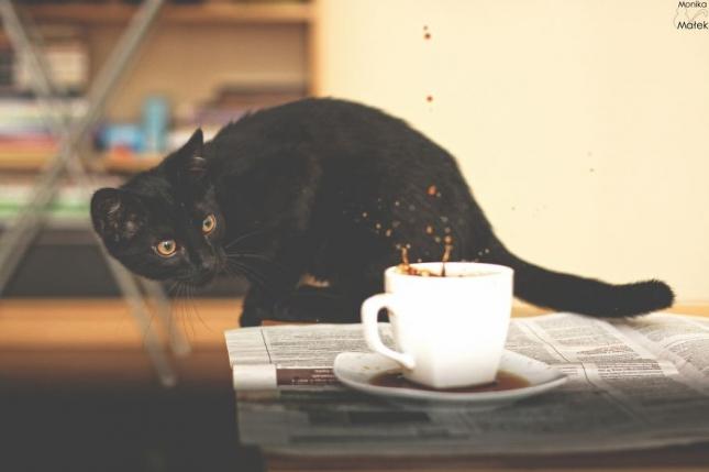Кофе, пролитый на блюдце,  - к беде