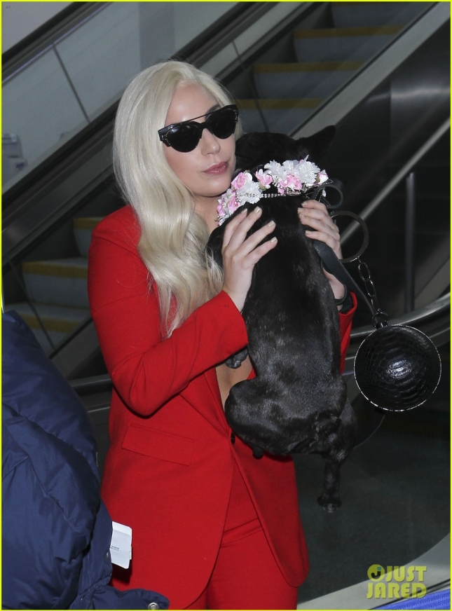 Braless Lady Gaga heads out of Los Angeles at LAX **USA ONLY**