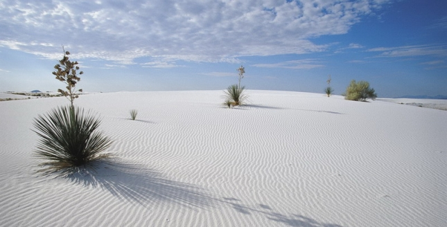 new-mexico-lascrucesnm-cvb-rickjohnsonco-whitesands