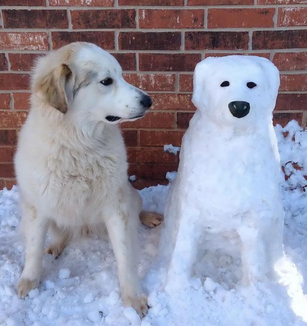 pet-snow-sculptures-3__605
