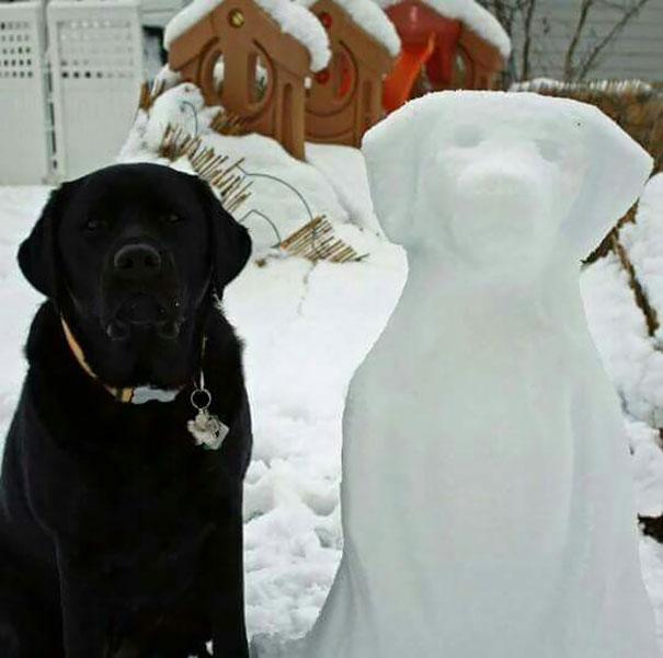 pet-snow-sculptures-9__605