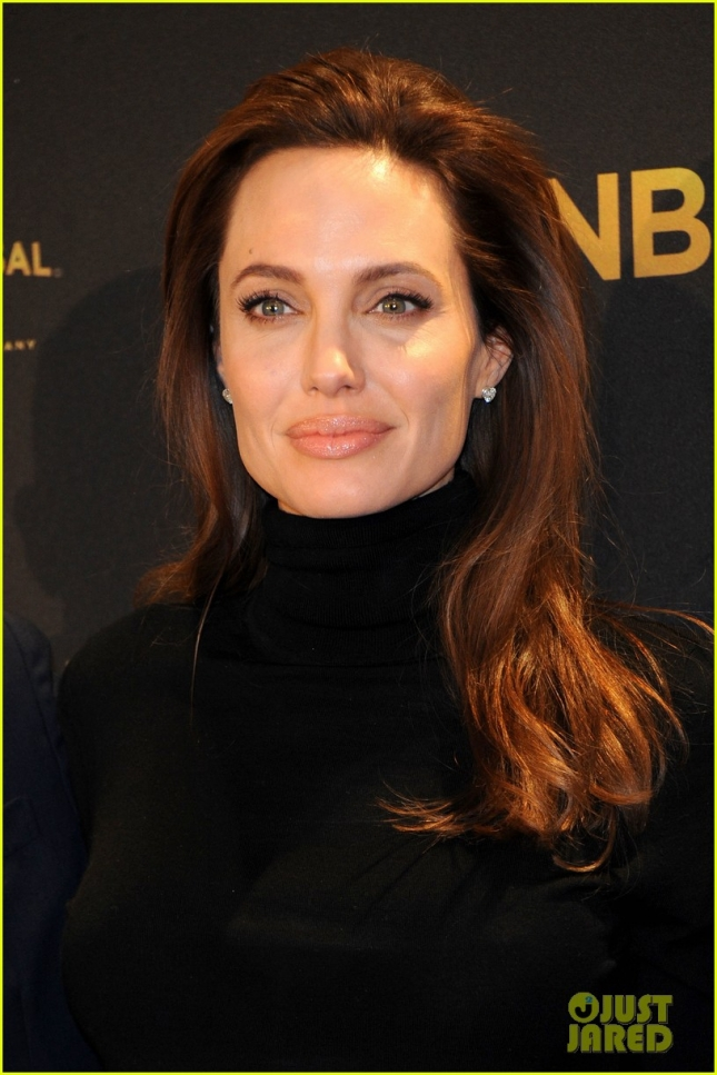 angelina-jolie-is-in-menopause-after-removing-ovaries-tubes-04