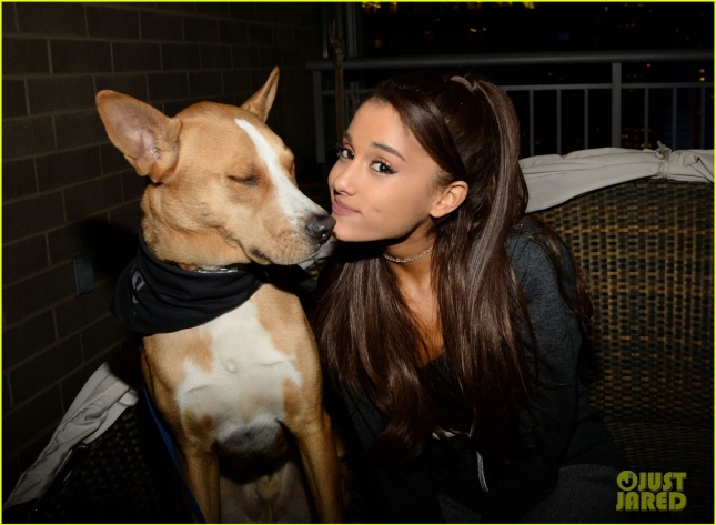 ariana-grande-is-doing-amazing-things-for-nyc-rescue-dogs-05