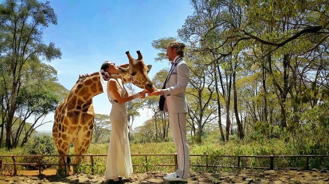 couple-wedding-around-the-world-travel-cheetah-rhiann-11