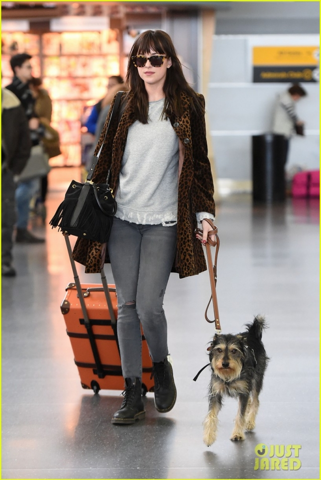 dakota-johnson-travels-solo-with-her-pet-pooch-by-her-side-03