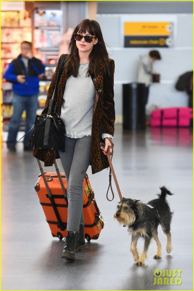 dakota-johnson-travels-solo-with-her-pet-pooch-by-her-side-13