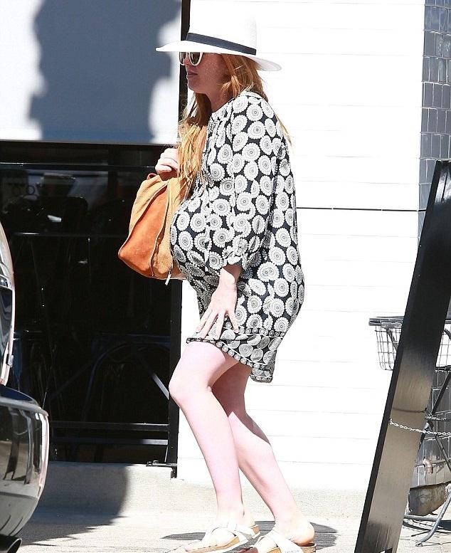 Айла Фишер сходила на обед с приятелями в Студио-Сити, 13 марта.