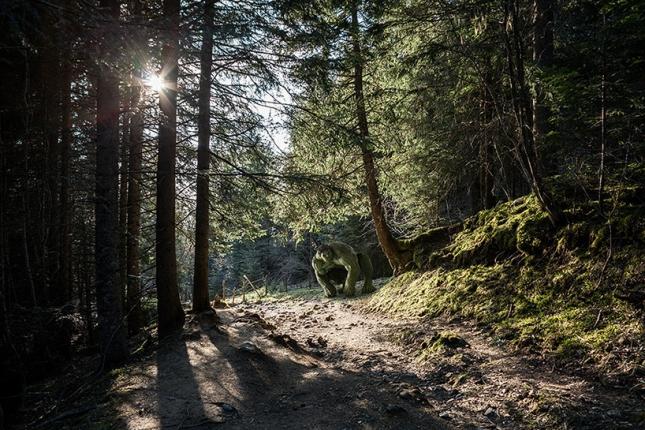 Халк в лесу