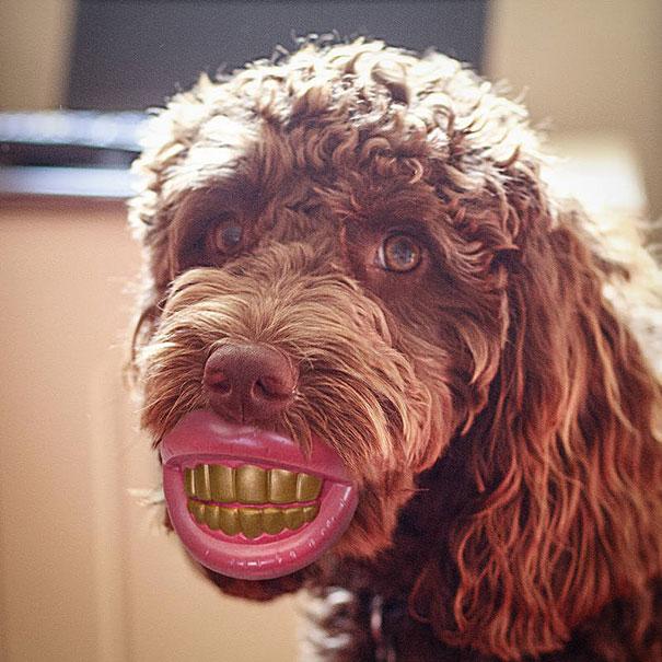 Не надо отставать от трендов и нужно носить золотые зубы