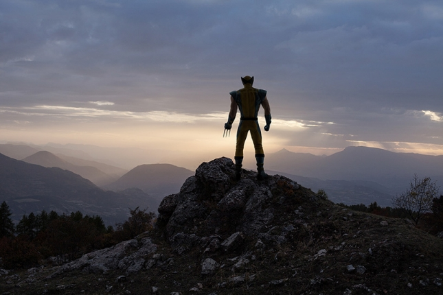Росомаха на обрыве скалы