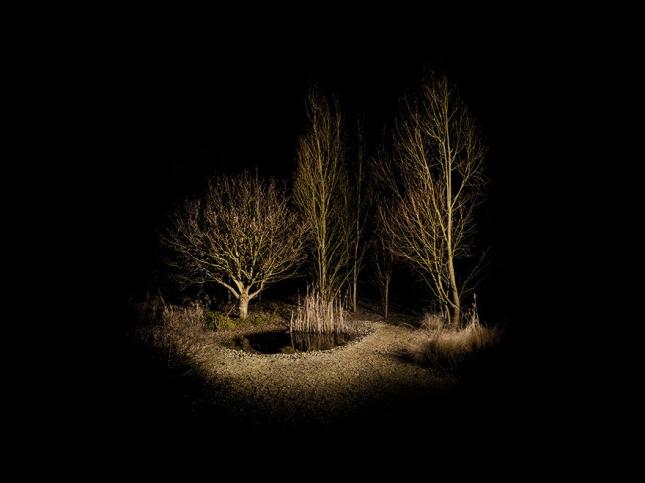 surreal-forest-photograhy-ellie-davis-19__880