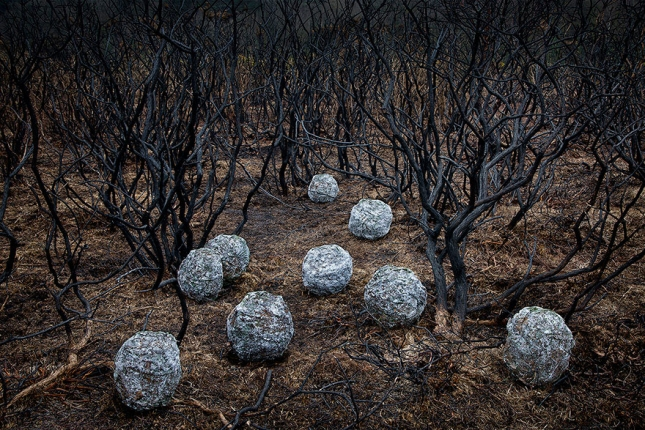 surreal-forest-photograhy-ellie-davis-20__880