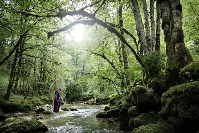 Тор в лесу