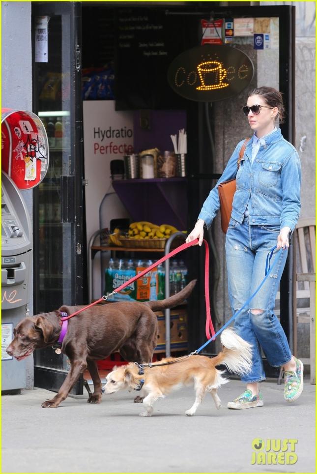 Энн Хэтэуэй на прогулке с собаками
