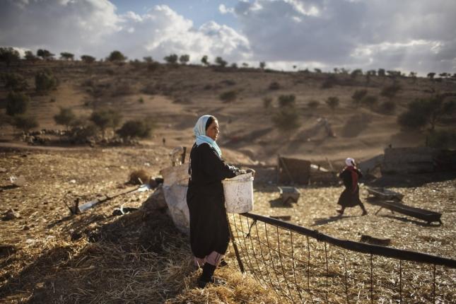 Бедуинка из Израильской пустыни, поселение Умм Аль-Хиран. Живет тем, что кормит скот, печет, собирает тростник на растопку и вообще проводит жизнь в круговерти житейских забот.