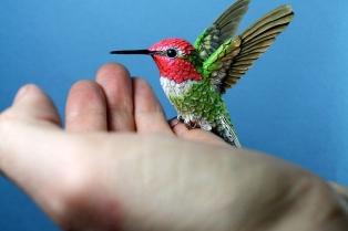 bird-new-1__880