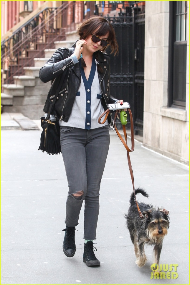 Dakota Johnson and her pooch Zeppelin go for an afternoon walk