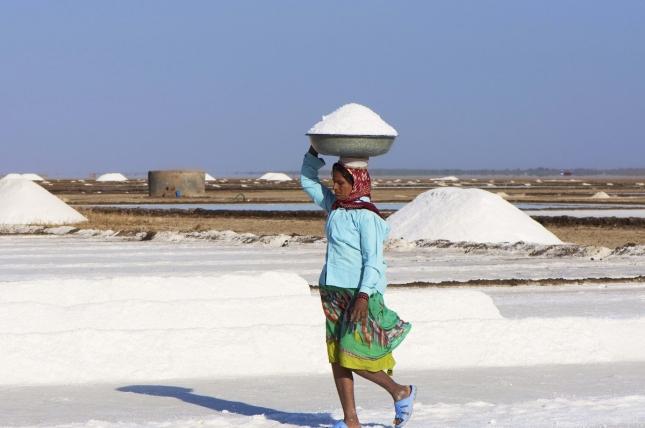 Индианка собирает соль в Гуджарате, Дрангадра.