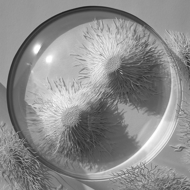 paper-cuttings-ecoli-bacteria-cut-microbe-rogan-brown-4