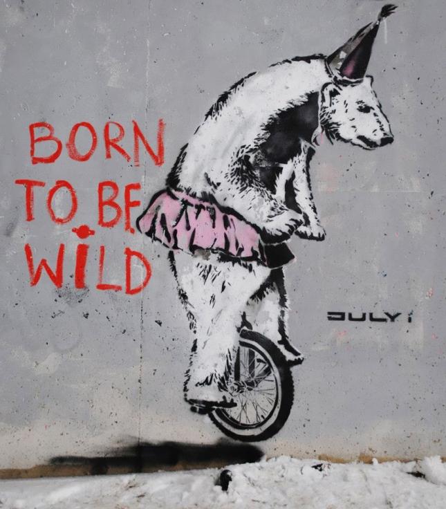 Рожден быть свободным