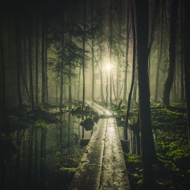 stars-night-sky-photography-self-taught-mikko-lagerstedt-21