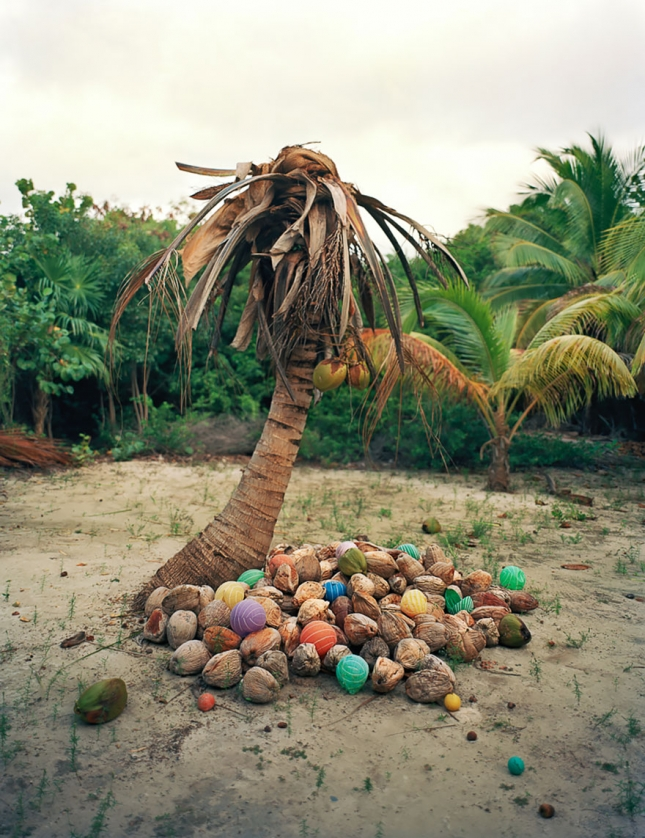 washed-up-trash-installations-alejandro-duran-5__880