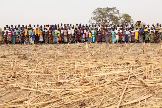 Женщины строят дамбу в Уагадугу, Буркина-Фасо