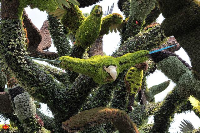 37 - Canada - Montréal - Detail - Tree of Birds - L'arbre aux o