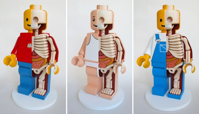 children-toy-cartoon-anatomy-bones-insides-jason-freeny-17__880