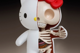 children-toy-cartoon-anatomy-bones-insides-jason-freeny-21