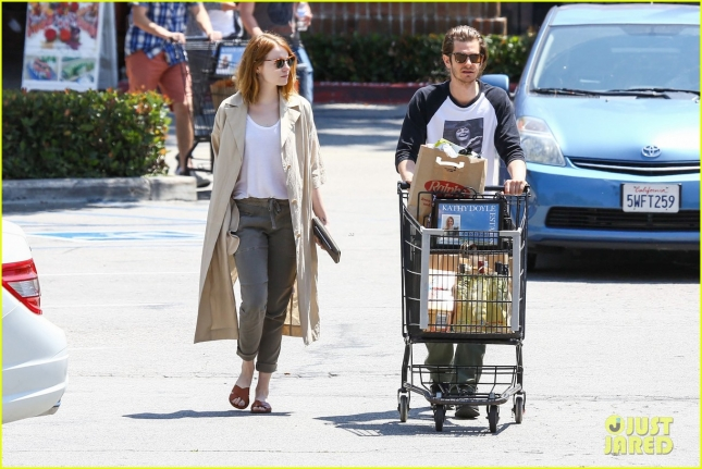 emma-stone-andrew-garfield-spotted-together-for-first-time-in-months-36