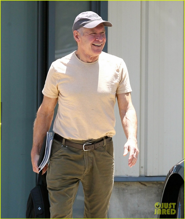 Harrison Ford Is All Smiles After Taking Flight!